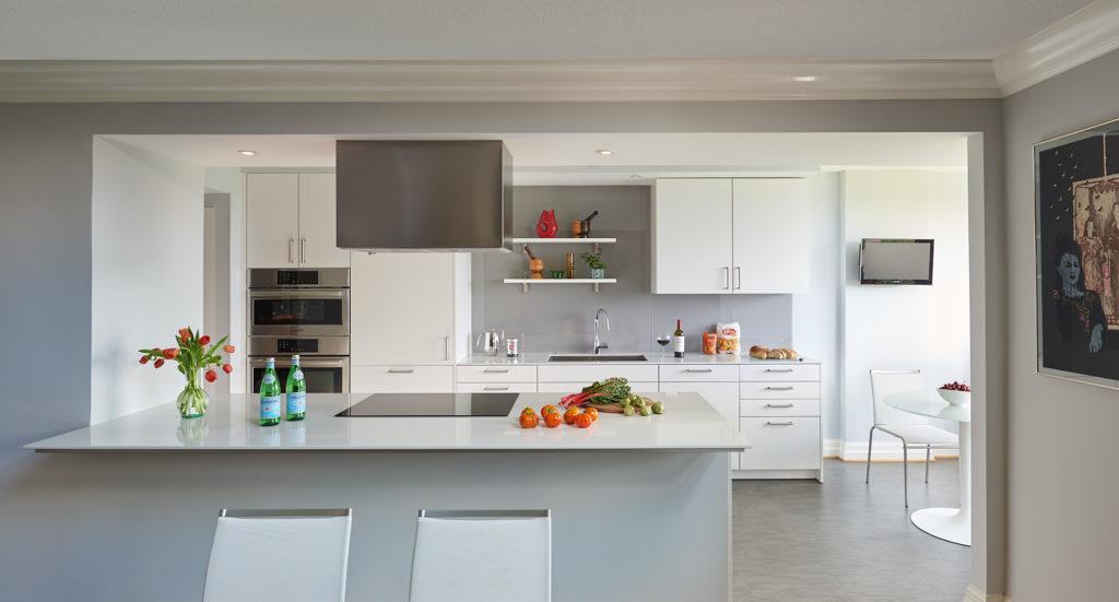 Carnemark Projects Kitchen Northwest Dc Condo